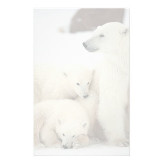 Polar She-bear With Cubs Stationery Paper