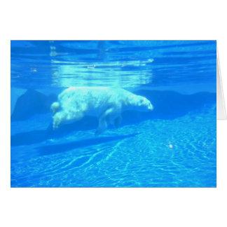 Polar swim card