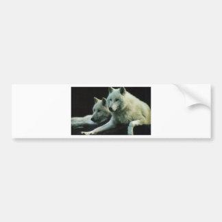 Polar Wolf Bumper Sticker