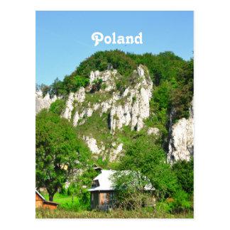 Polish Countryside Postcard