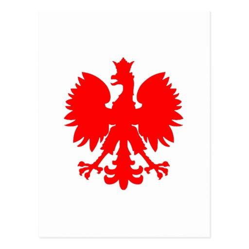 Polish Falcon (Eagle) Post Card