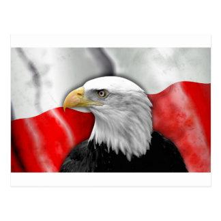Polish Flag Post Cards