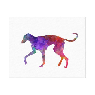 Polish Greyhound in watercolor Canvas Print