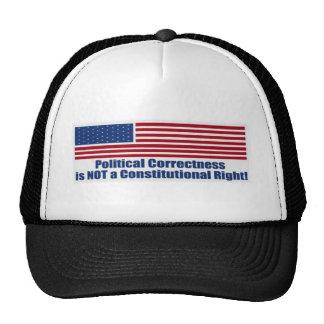 Political Correctness Hat