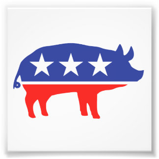Political Party Pig Mascot Photographic Print