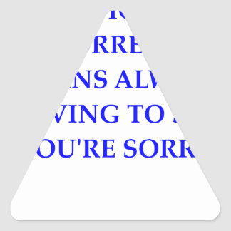 politically correct triangle sticker