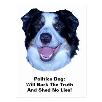 Politics Border Collie Bark The Truth Postcard