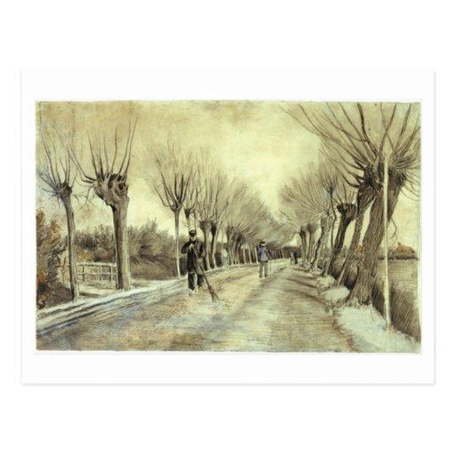 Pollard Willows, Man with Broom, Vincent van Gogh Postcard