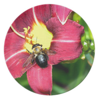 Pollinating Bee Party Plate
