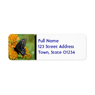 Pollinating Butterfly Return Address Label