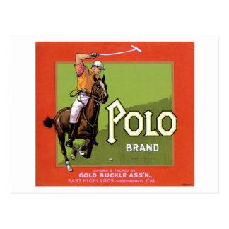 Polo Brand Postcard