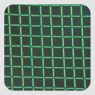 Polylactic acid under the microscope square sticker