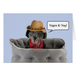 Pom-a-Poo Dog Wearing Cowboy Hat Focus for a Cause Card