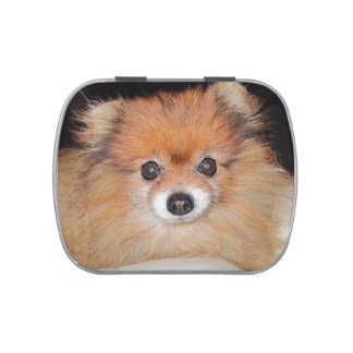 pom.png jelly belly tin