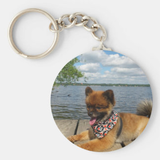 pom pup on dock key ring
