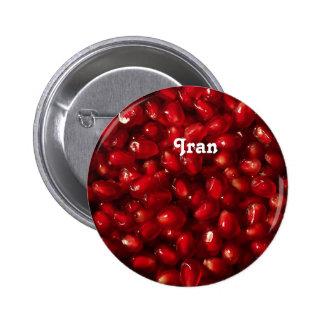 Pomegranate Pins