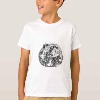 Pomegranate in Black and White T-Shirt
