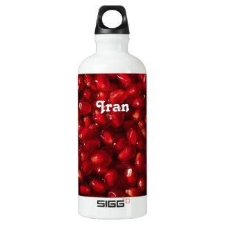 Pomegranate SIGG Traveller 0.6L Water Bottle