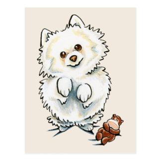 Pomeranian Boo Boo Postcard