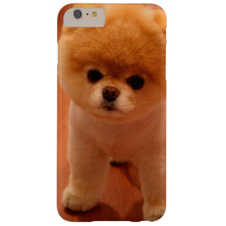 Pomeranian-cute puppies-spitz-pom dog-pom puppies barely there iPhone 6 plus case