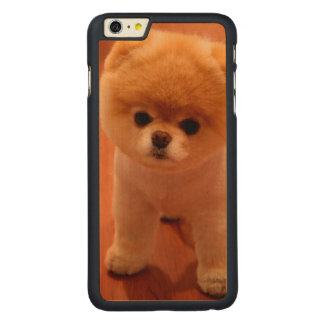 Pomeranian-cute puppies-spitz-pom dog-pom puppies carved maple iPhone 6 plus case