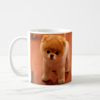 Pomeranian-cute puppies-spitz-pom dog-pom puppies coffee mug