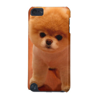 Pomeranian-cute puppies-spitz-pom dog-pom puppies iPod touch 5G cover
