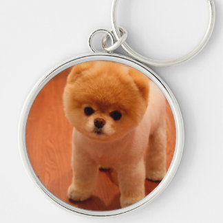 Pomeranian-cute puppies-spitz-pom dog-pom puppies key ring