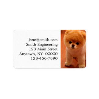 Pomeranian-cute puppies-spitz-pom dog-pom puppies label