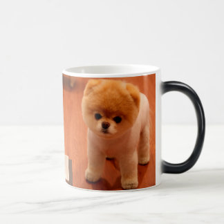 Pomeranian-cute puppies-spitz-pom dog-pom puppies magic mug