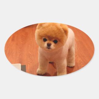 Pomeranian-cute puppies-spitz-pom dog-pom puppies oval sticker