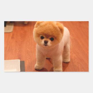 Pomeranian-cute puppies-spitz-pom dog-pom puppies rectangular sticker