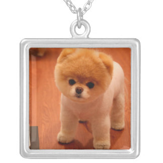 Pomeranian-cute puppies-spitz-pom dog-pom puppies silver plated necklace