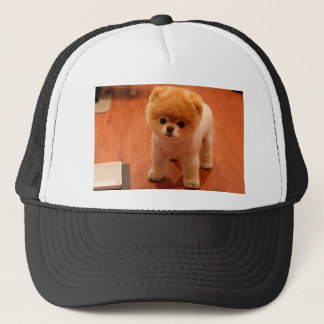Pomeranian-cute puppies-spitz-pom dog-pom puppies trucker hat