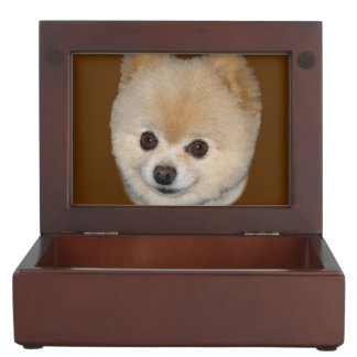 Pomeranian Dog Customizable Keepsake Box