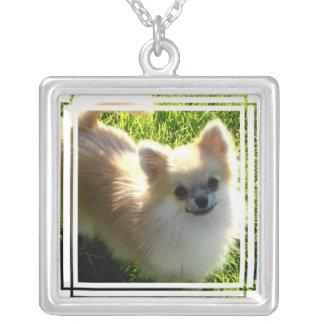 Pomeranian Dog Necklace