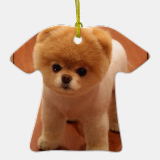 Pomeranian Dog Pet Puppy Small Adorable baby Ornaments