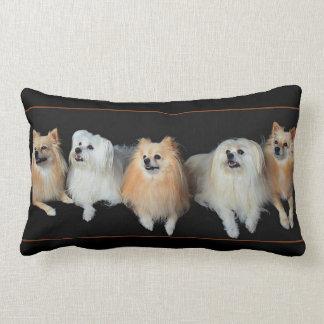 Pomeranian Dogs on Lumbar Throw Pillow