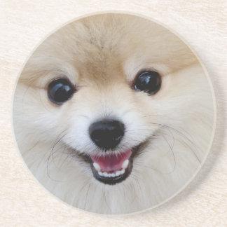 Pomeranian dwarf spitz coaster
