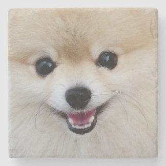 Pomeranian dwarf spitz stone coaster