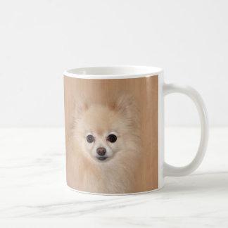 Pomeranian face coffee mug