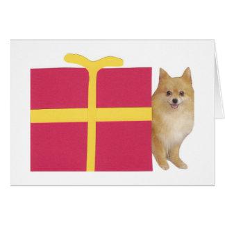 Pomeranian Gift Box Card