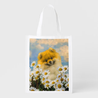 Pomeranian in Daisies