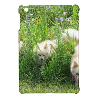 Pomeranian iPad Mini Cases
