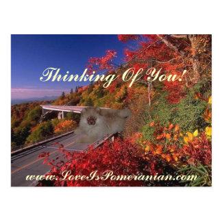 Pomeranian Named Zeus Colorful Autumn Scene Postcard