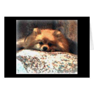 Pomeranian Notecard
