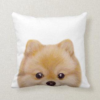 Pomeranian original painting by miart cushion