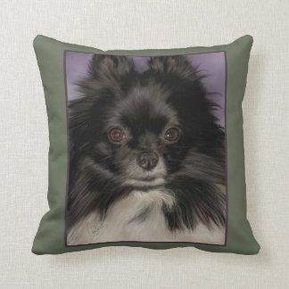 Pomeranian Pillow