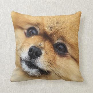 Pomeranian Portrait Cushion