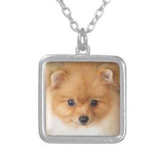 Pomeranian spitz silver plated necklace
